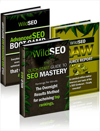 Wild SEO Review – Get Wild SEO Book Only For $7