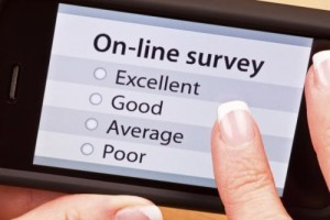 fun personal surveys online